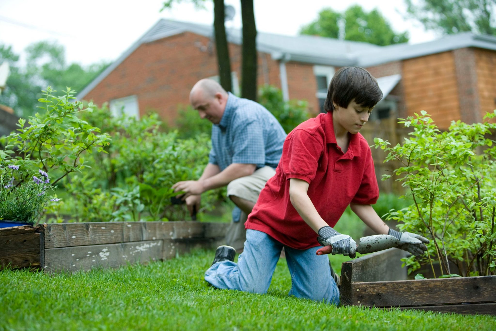 boy gardening with his father